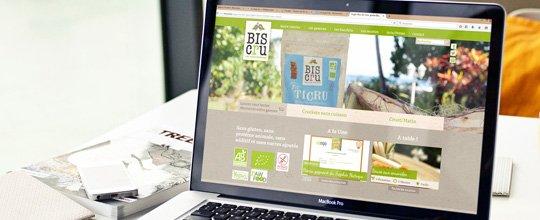 Un nouveau site Internet pour notre client BISCRU