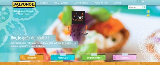 Création du nouveau site Raiponce par notre agence Web sur Avignon !